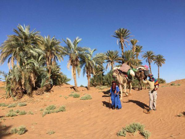"""Stage Initiatique """"Le Souffle du désert"""" du 24 au 31 mars 2018"""